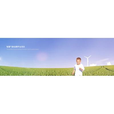 天津武清乐虎国际app官网气象保障平台项目